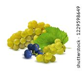 fresh  nutritious  tasty grapes.... | Shutterstock .eps vector #1229598649
