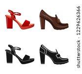 vector illustration of footwear ... | Shutterstock .eps vector #1229626366