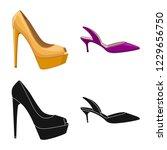 vector illustration of footwear ... | Shutterstock .eps vector #1229656750