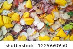 autumn leaves on the ground.... | Shutterstock . vector #1229660950