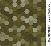 hexagonal pattern   grid. color ... | Shutterstock . vector #1229760730