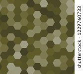 hexagonal pattern   grid. color ... | Shutterstock . vector #1229760733
