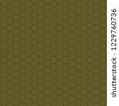 hexagonal pattern   grid. color ... | Shutterstock . vector #1229760736