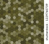 hexagonal pattern   grid. color ... | Shutterstock . vector #1229760739