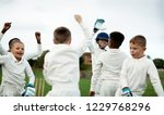 young happy cricketers cheering ... | Shutterstock . vector #1229768296