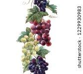 watercolor vertical pattern  a... | Shutterstock . vector #1229930983
