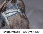the hairdresser does hair...   Shutterstock . vector #1229954530