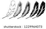 collection of feather... | Shutterstock .eps vector #1229964073