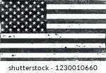 black and white american flag... | Shutterstock .eps vector #1230010660