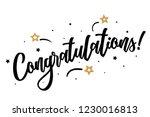 congratulations. beautiful...   Shutterstock .eps vector #1230016813
