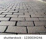 perspective view monotone gray... | Shutterstock . vector #1230034246