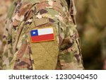 chile flag on soldiers arm.... | Shutterstock . vector #1230040450