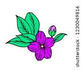 flower vector illustration | Shutterstock .eps vector #1230049816