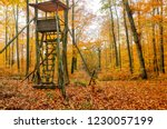 wooden lookout tower for... | Shutterstock . vector #1230057199