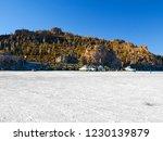 isla incahuasi or isla de los...   Shutterstock . vector #1230139879