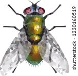 low poly blow fly  polinomial... | Shutterstock .eps vector #1230160519
