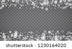 isolated snowflakes on... | Shutterstock .eps vector #1230164020