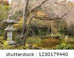 okochi sanso villa in kyoto ... | Shutterstock . vector #1230179440