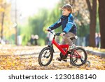 happy boy with bicycle in the... | Shutterstock . vector #1230188140