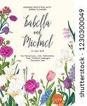 vivid spring card with garden... | Shutterstock .eps vector #1230300049