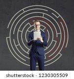 businessman with computer...   Shutterstock . vector #1230305509