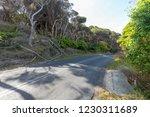 asphalt road along the coast... | Shutterstock . vector #1230311689