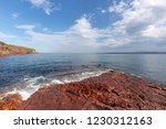 australia  new south wales... | Shutterstock . vector #1230312163