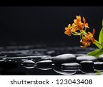 branch orange orchid with black ... | Shutterstock . vector #123043408
