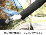 driver opening car door ... | Shutterstock . vector #1230494866
