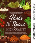 spices and herbs market ... | Shutterstock .eps vector #1230499519