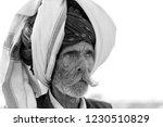 Pushkar  india   november 14 ...