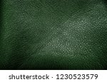 green leather background texture | Shutterstock . vector #1230523579