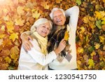 Older Couple Lying In Autumn...
