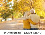 elderly couple embracing in... | Shutterstock . vector #1230543640