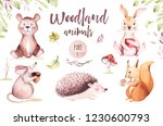 Stock photo cute baby animal nursery mouse rabbit and bear isolated illustration for children watercolor boho 1230600793