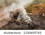 smoke  carbon dioxide from hay... | Shutterstock . vector #1230605743