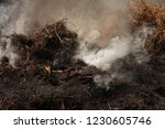smoke  carbon dioxide from hay... | Shutterstock . vector #1230605746