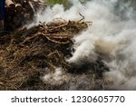 smoke  carbon dioxide from hay... | Shutterstock . vector #1230605770