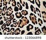 abstract animal texture | Shutterstock . vector #123066898