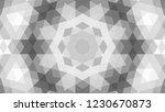 gray geometric design  gray...   Shutterstock .eps vector #1230670873