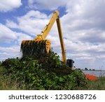 backhoe dump water hyacinth...   Shutterstock . vector #1230688726