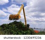 backhoe dump water hyacinth...   Shutterstock . vector #1230695236