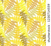 fern frond herbs  tropical... | Shutterstock .eps vector #1230714559