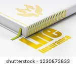 insurance concept  closed book...   Shutterstock . vector #1230872833