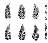 set of palm leaf vector... | Shutterstock .eps vector #1230890383