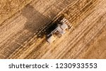aerial view of agriculture... | Shutterstock . vector #1230933553