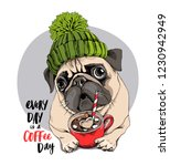 adorable beige puppy pug in a... | Shutterstock .eps vector #1230942949