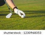 female hand in glove placing... | Shutterstock . vector #1230968353