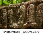chichen itza yucatan mexico... | Shutterstock . vector #1230969379