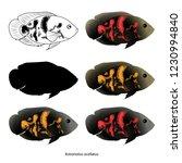 Set Of Aquarium Fish. Isolated...